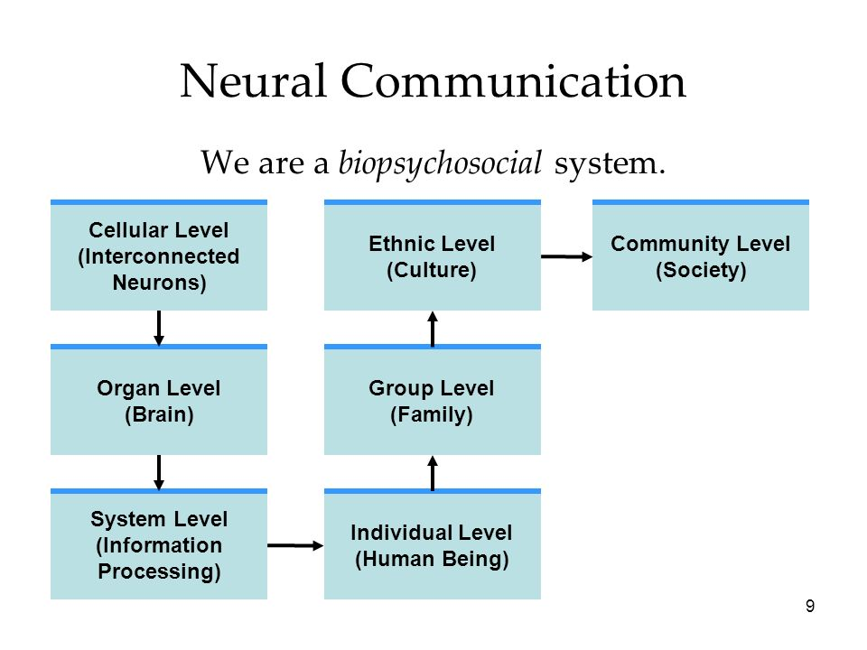 We are a biopsychosocial system.