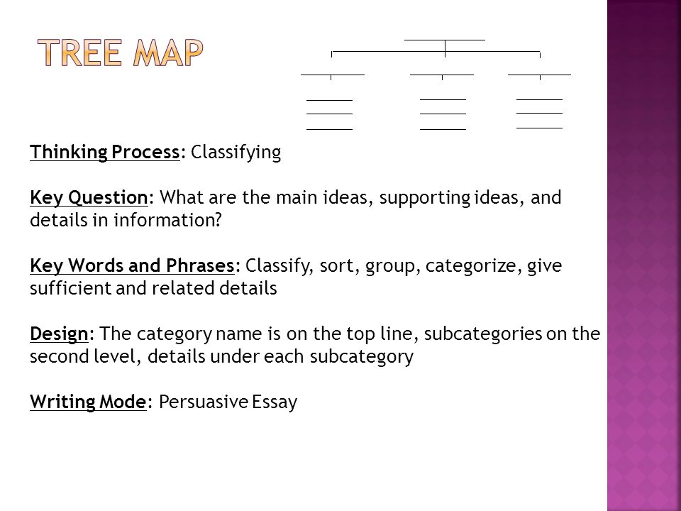 Tree Map Thinking Process: Classifying
