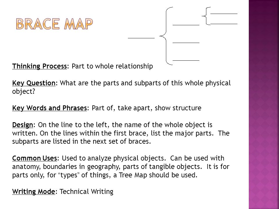 Brace Map Thinking Process: Part to whole relationship