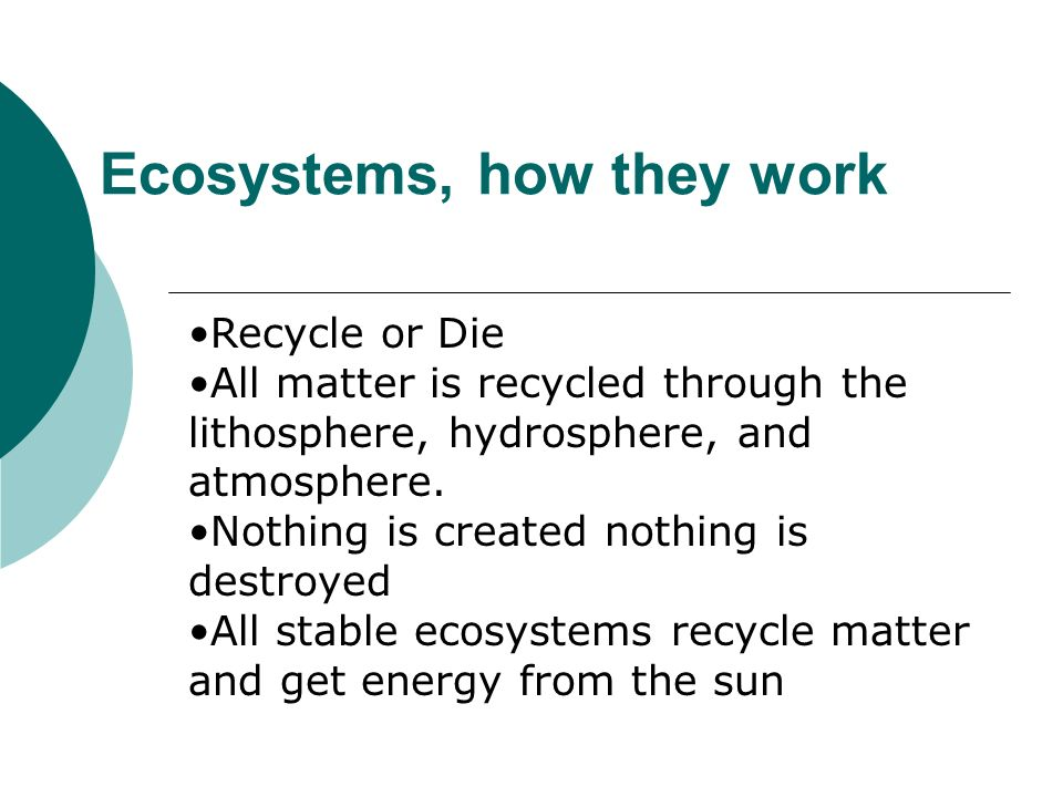 Ecosystems, how they work