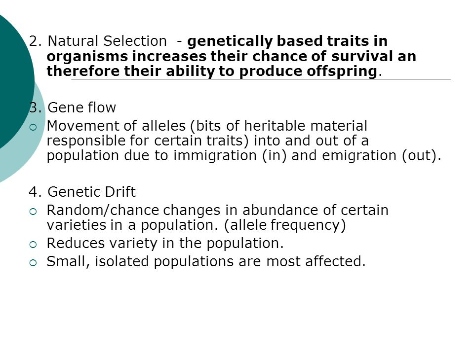2. Natural Selection - genetically based traits in organisms increases their chance of survival an therefore their ability to produce offspring.