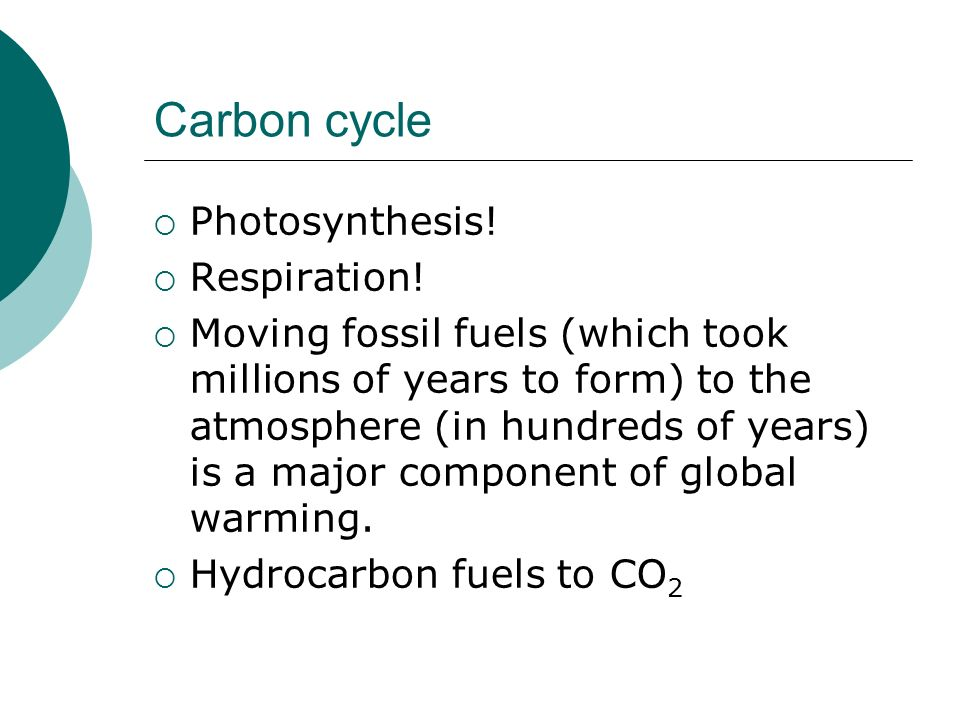 Carbon cycle Photosynthesis! Respiration!