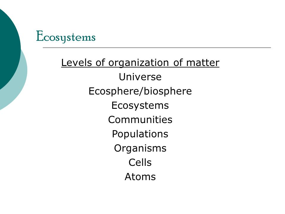 Levels of organization of matter