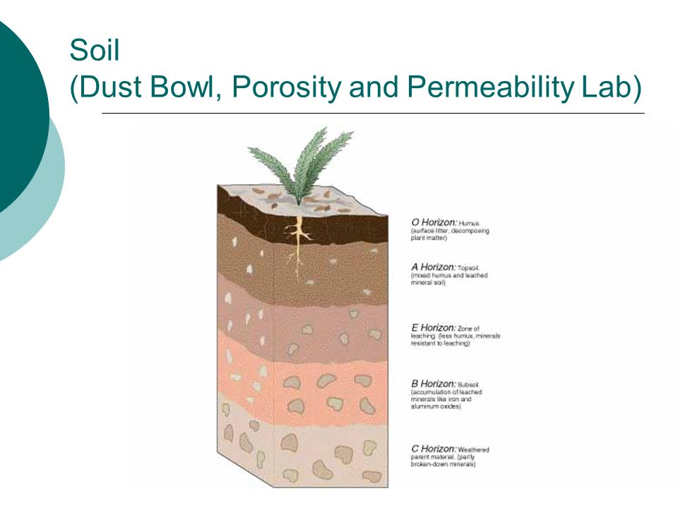 Soil (Dust Bowl, Porosity and Permeability Lab)