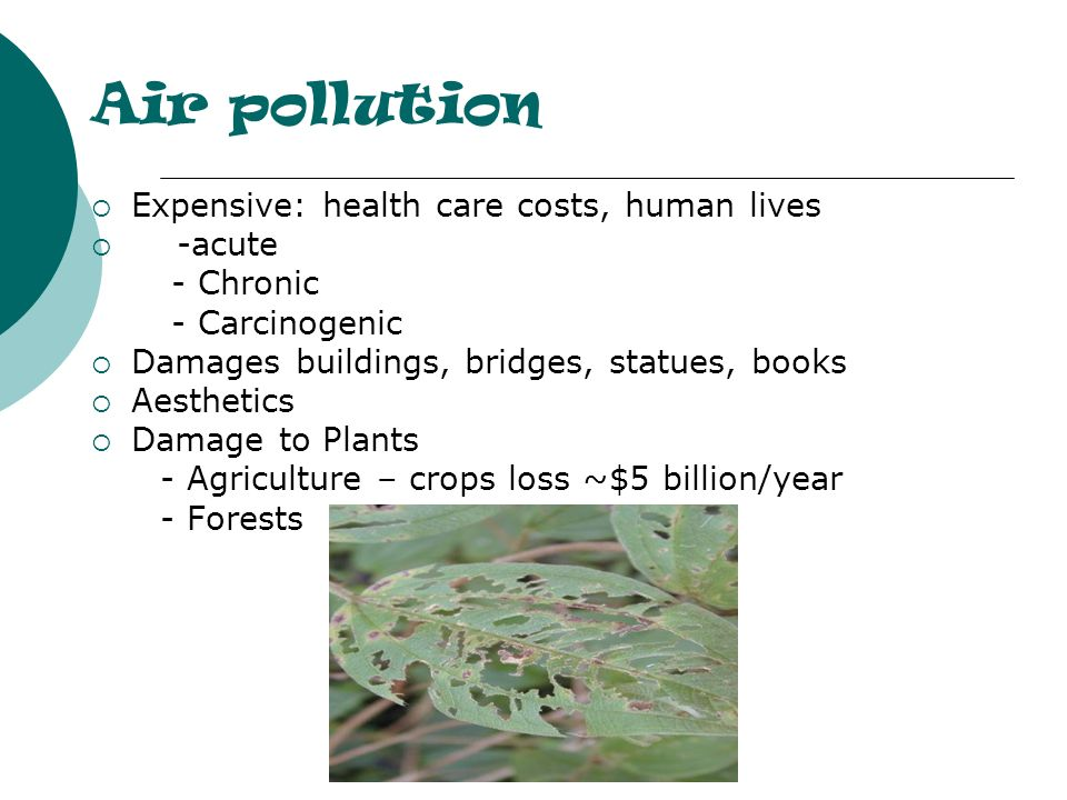 Air pollution Expensive: health care costs, human lives -acute