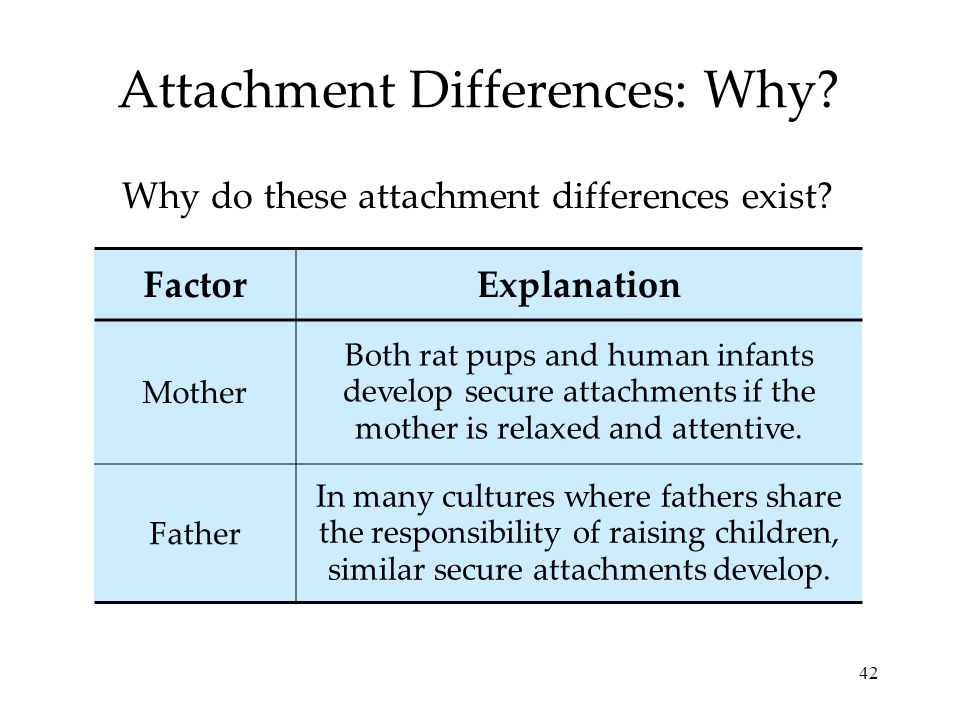 Attachment Differences: Why
