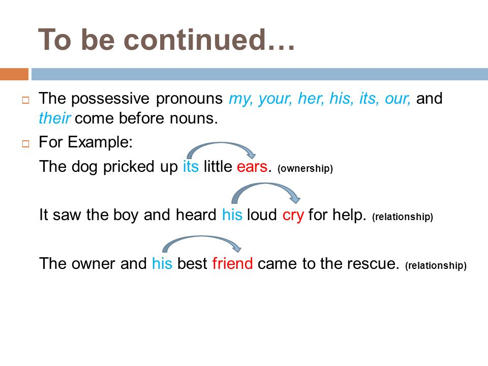 To be continued… The possessive pronouns my, your, her, his, its, our, and their come before nouns.