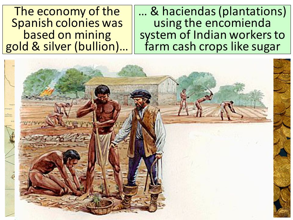 The economy of the Spanish colonies was based on mining gold & silver (bullion)…