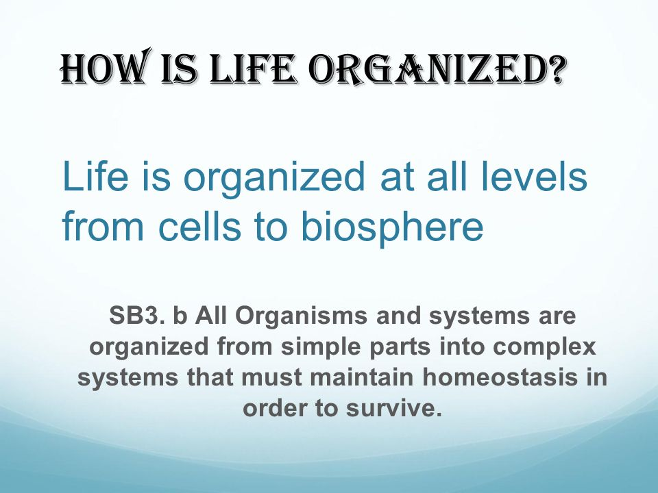 Life is organized at all levels from cells to biosphere
