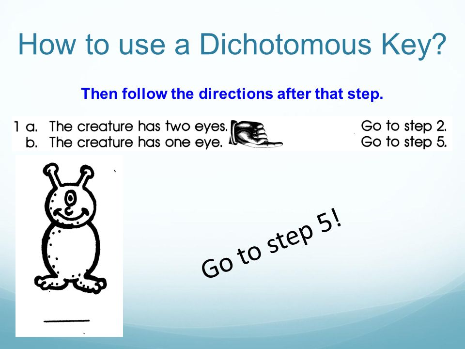 Then follow the directions after that step.