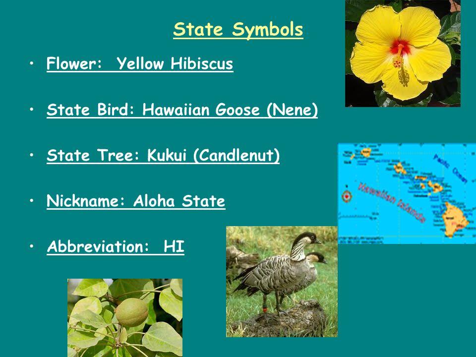 State Symbols Flower: Yellow Hibiscus