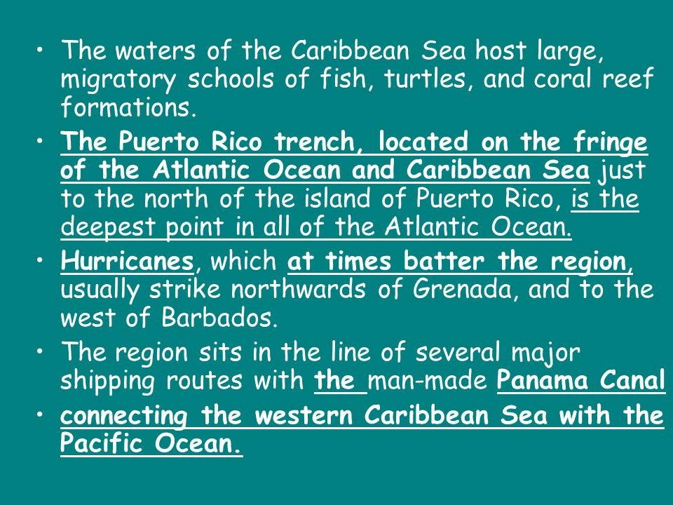 The waters of the Caribbean Sea host large, migratory schools of fish, turtles, and coral reef formations.