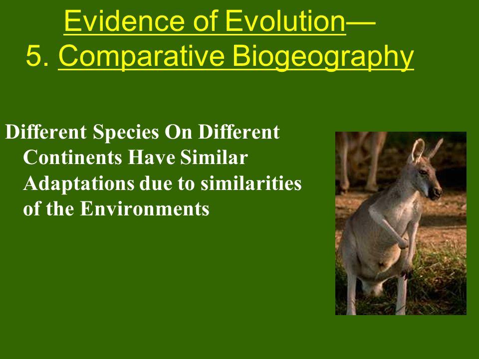 Evidence of Evolution— 5. Comparative Biogeography