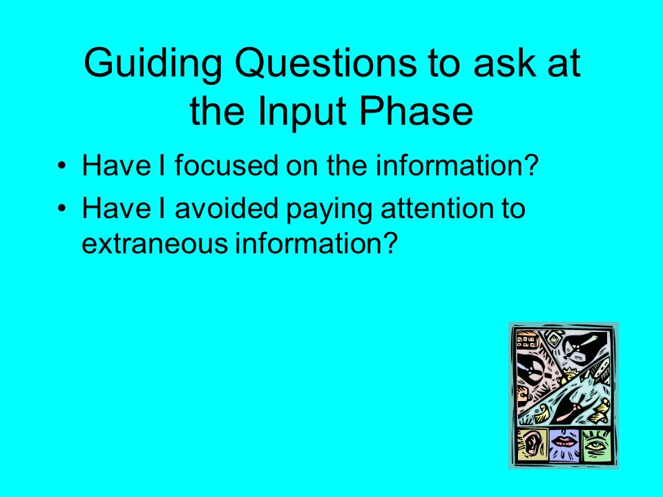 Guiding Questions to ask at the Input Phase