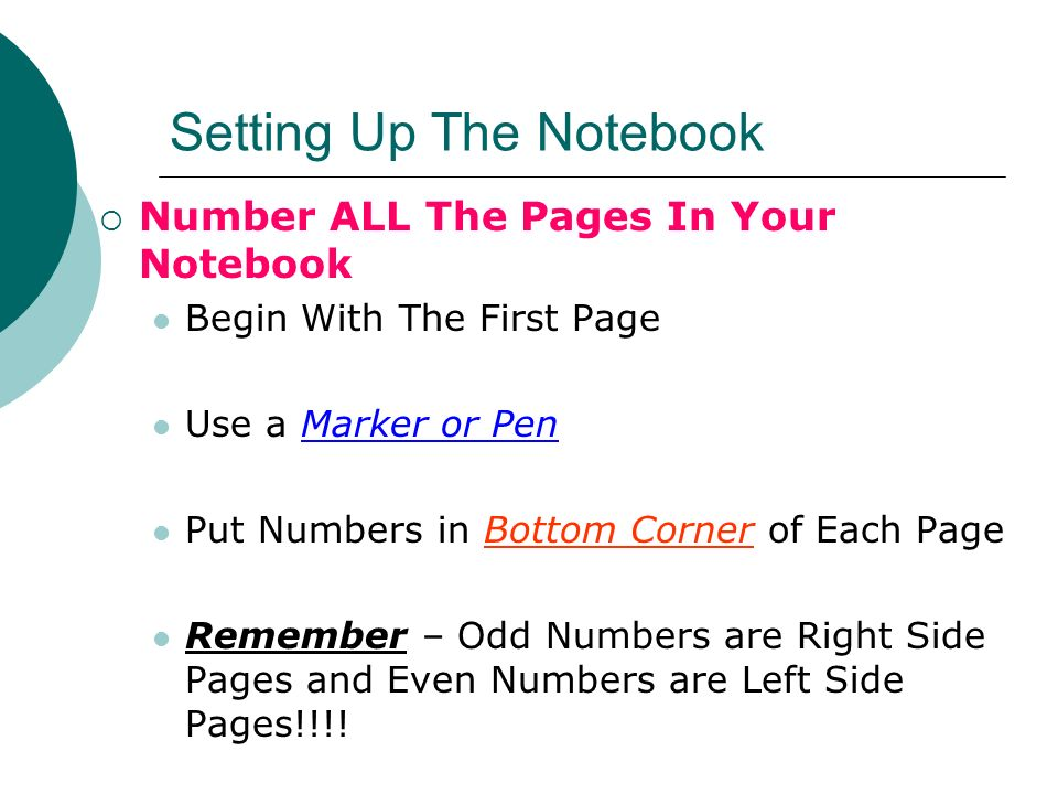Setting Up The Notebook