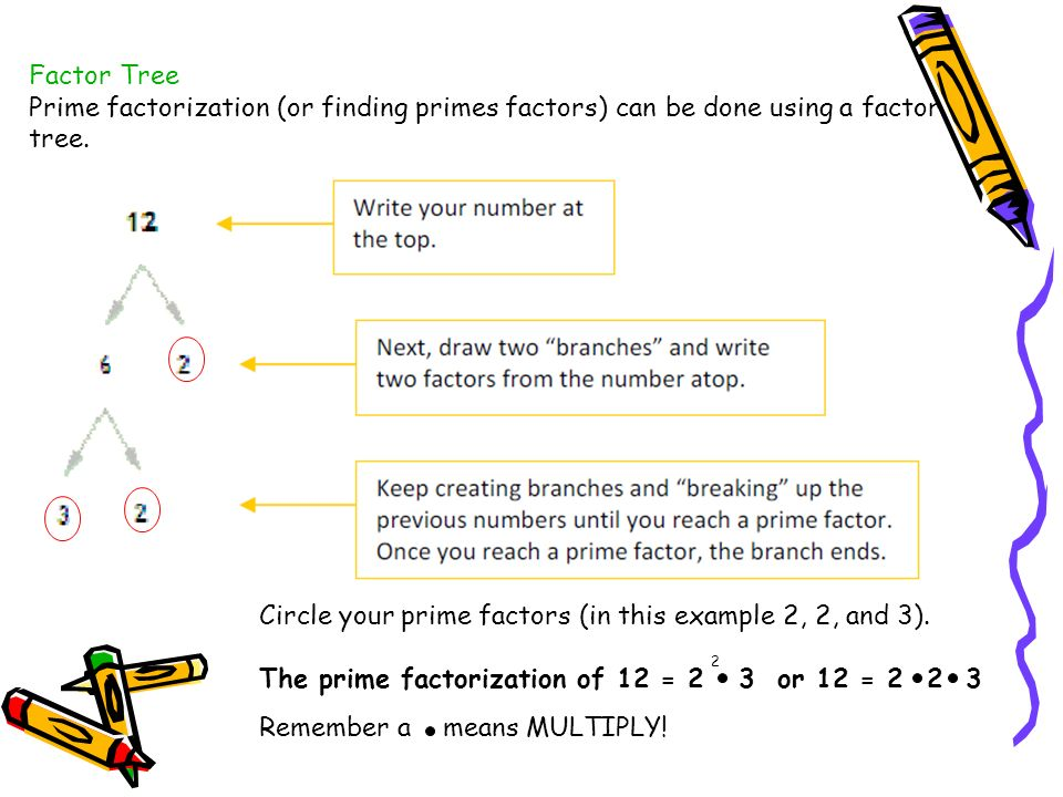 Circle your prime factors (in this example 2, 2, and 3).
