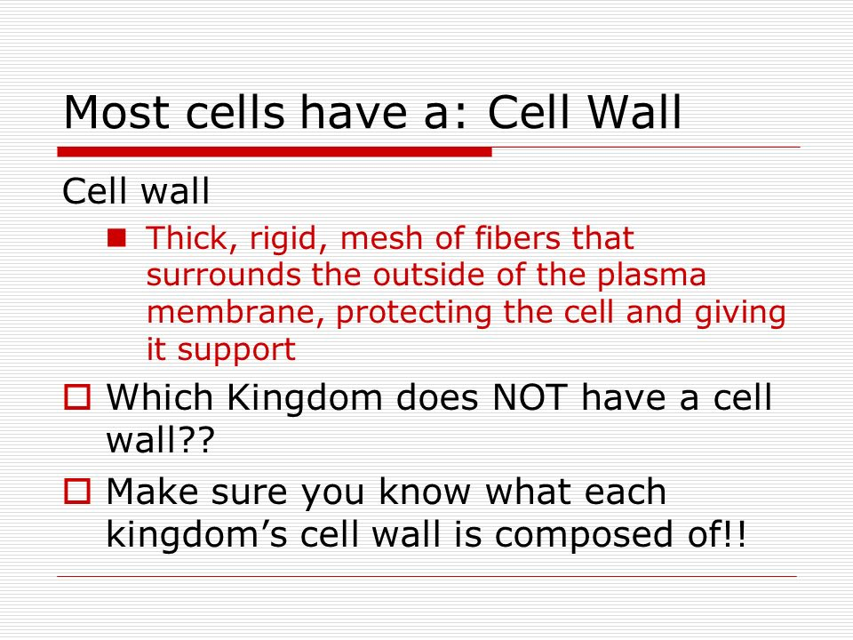 Most cells have a: Cell Wall
