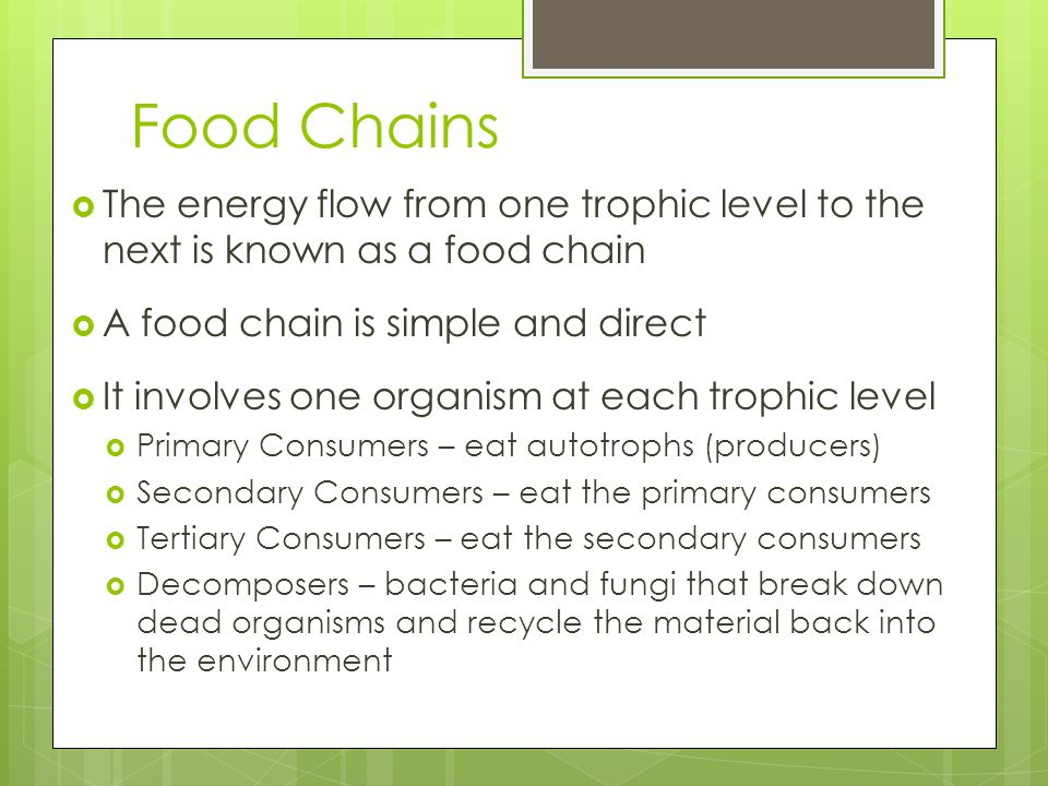 Food Chains The energy flow from one trophic level to the next is known as a food chain. A food chain is simple and direct.
