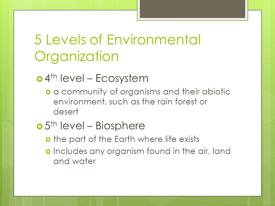 5 Levels of Environmental Organization