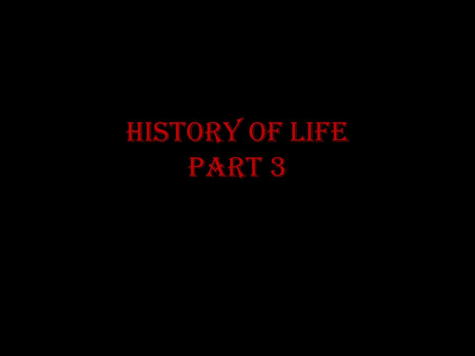 History of Life Part 3