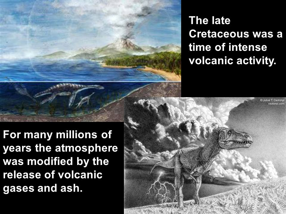 The late Cretaceous was a time of intense volcanic activity.