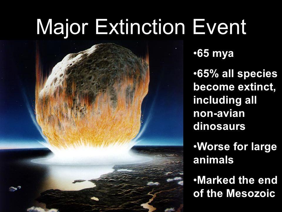 Major Extinction Event