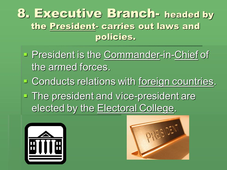 8. Executive Branch- headed by the President- carries out laws and policies.