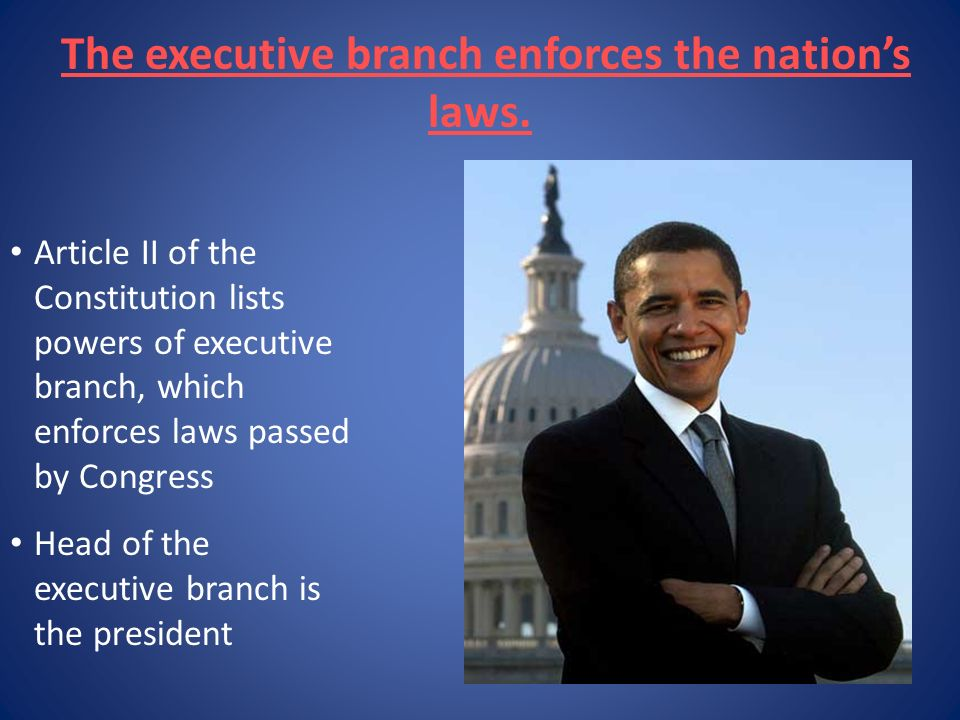 The executive branch enforces the nation's laws.