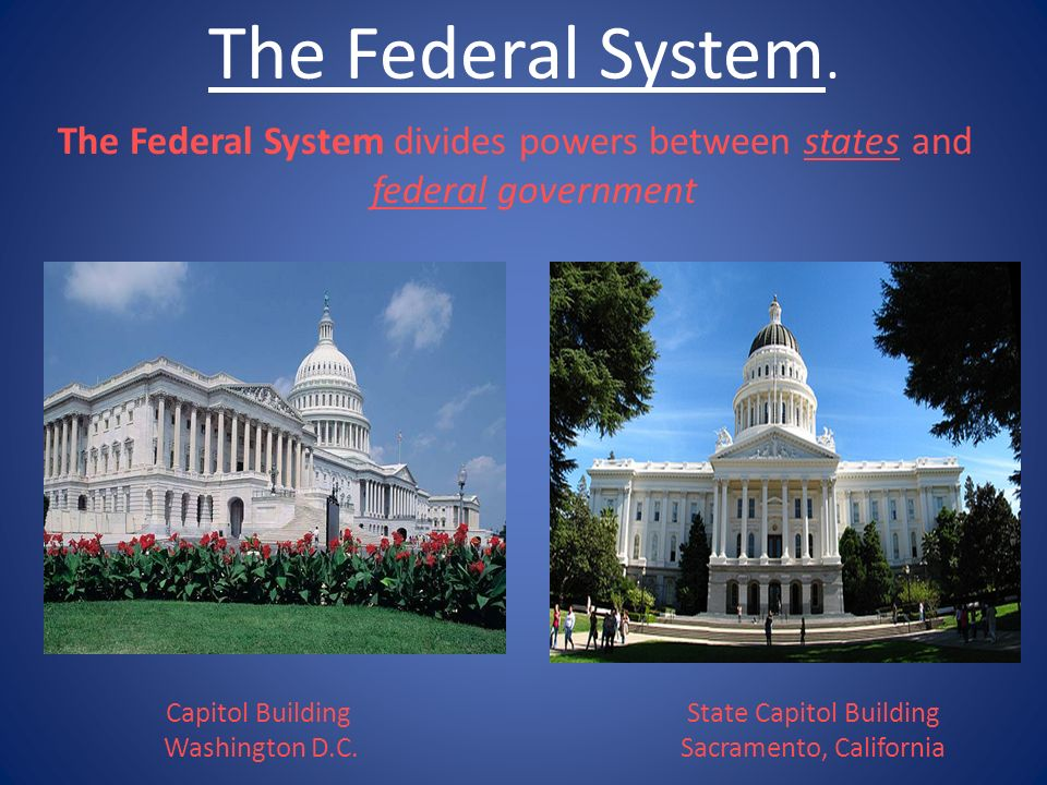 The Federal System. The Federal System divides powers between states and federal government.