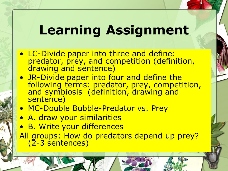 Learning Assignment LC-Divide paper into three and define: predator, prey, and competition (definition, drawing and sentence)