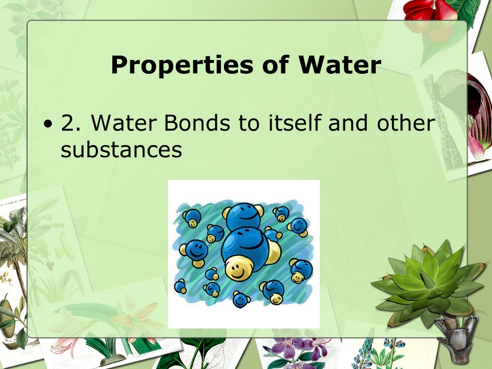 Properties of Water 2. Water Bonds to itself and other substances