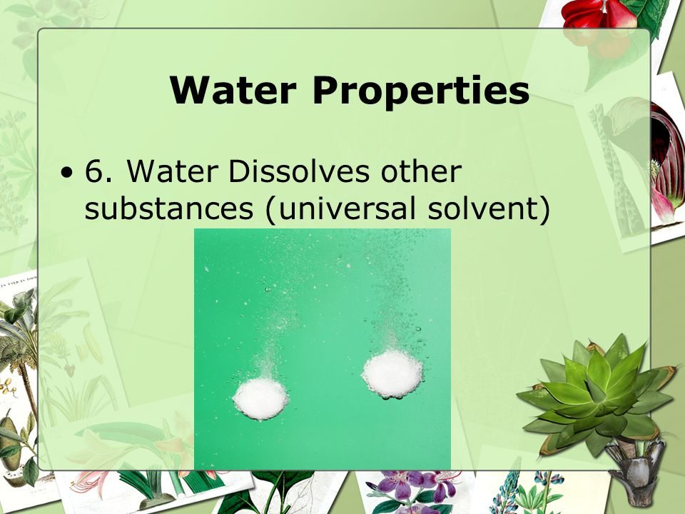 Water Properties 6. Water Dissolves other substances (universal solvent)