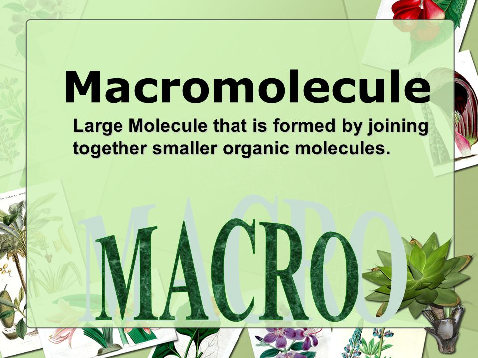Macromolecule Large Molecule that is formed by joining together smaller organic molecules. MACRO 66