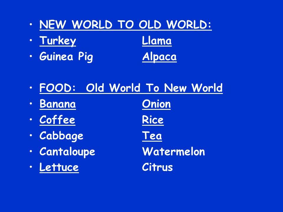 NEW WORLD TO OLD WORLD: Turkey Llama. Guinea Pig Alpaca. FOOD: Old World To New World. Banana Onion.