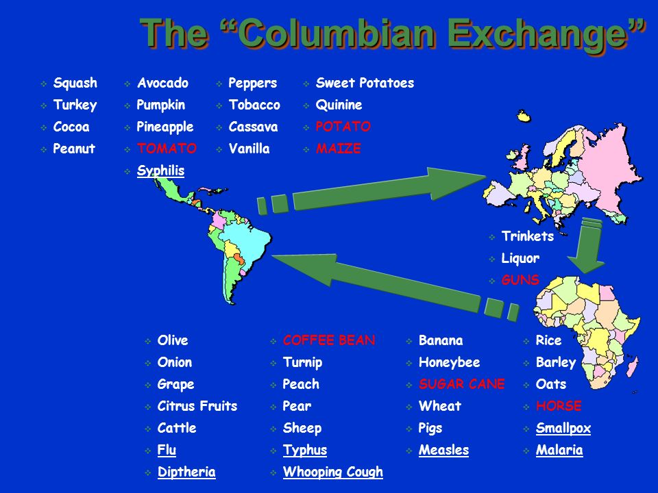 a description of columbian exchange The columbian exchange was the arrival european people, plants, animals, and diseases in the americas it happened when columbus and subsequent explorers arrived in north and south america.