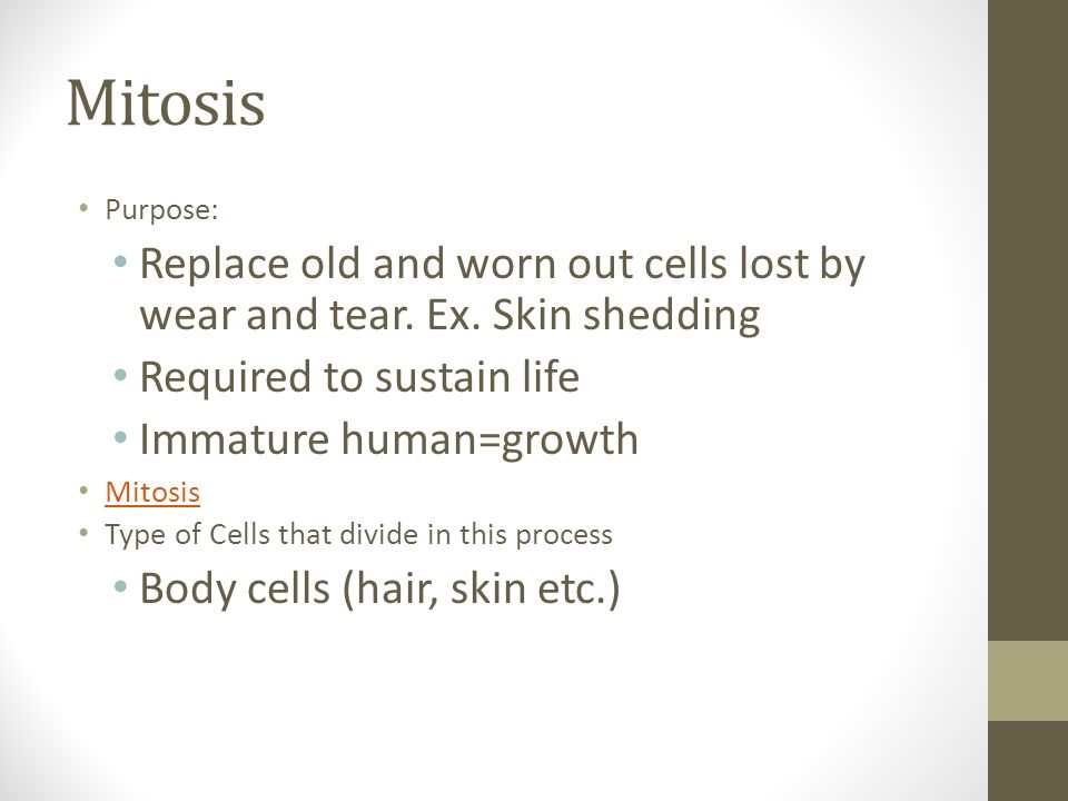 Mitosis Purpose: Replace old and worn out cells lost by wear and tear. Ex. Skin shedding. Required to sustain life.