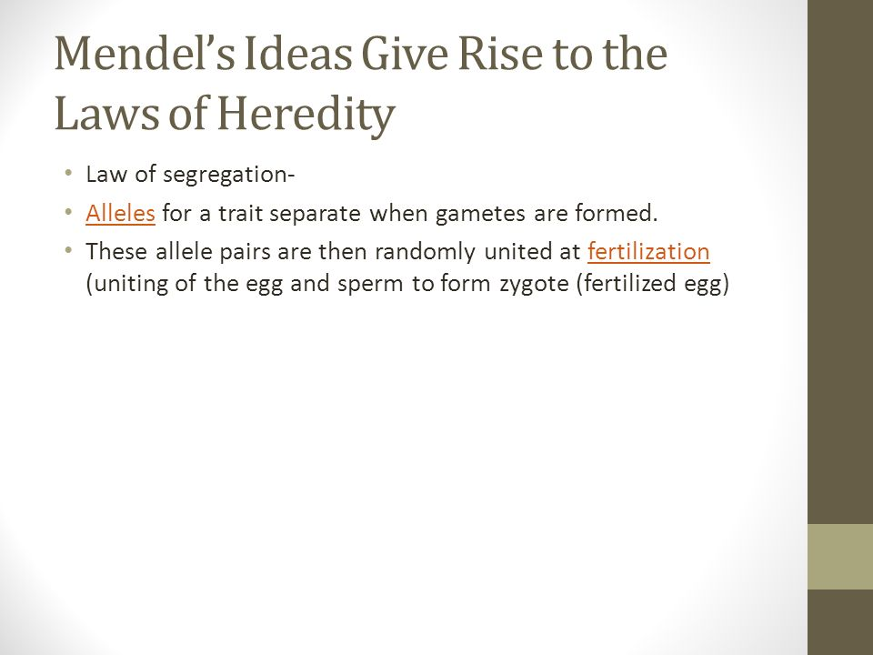 Mendel's Ideas Give Rise to the Laws of Heredity