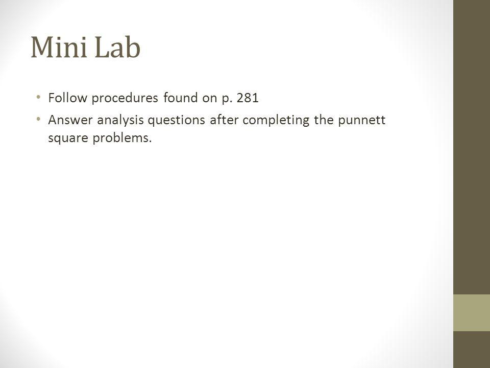 Mini Lab Follow procedures found on p. 281