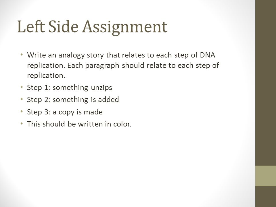 Left Side Assignment Write an analogy story that relates to each step of DNA replication. Each paragraph should relate to each step of replication.
