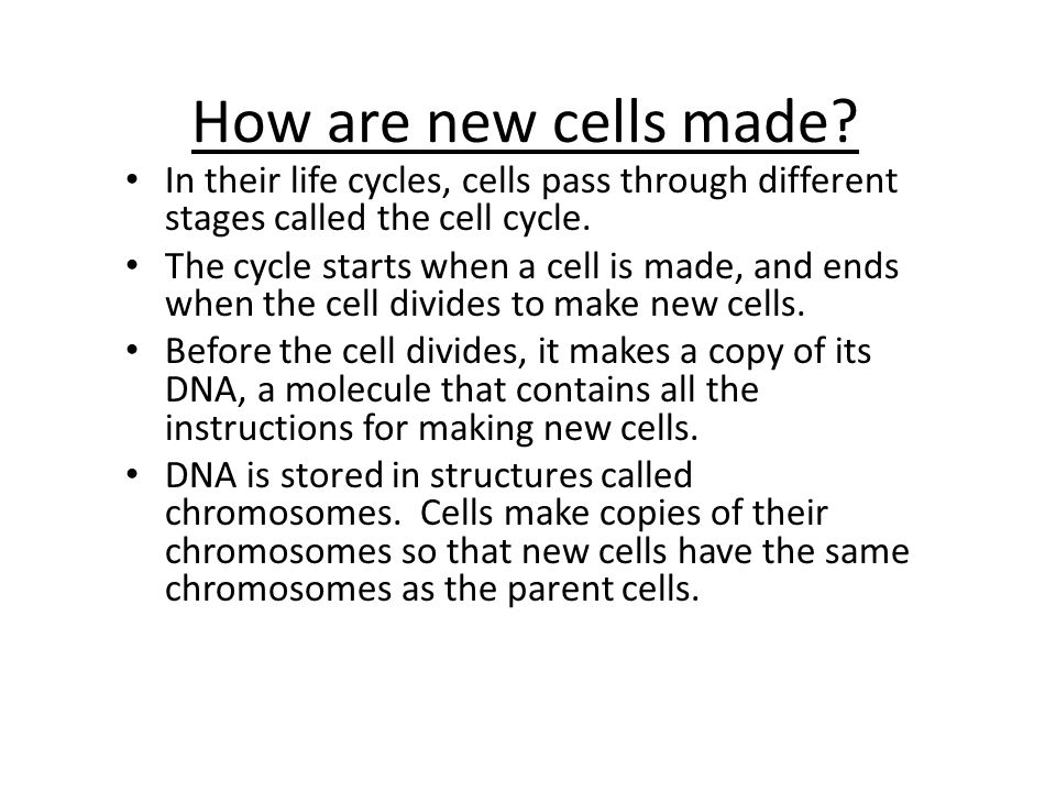 How are new cells made In their life cycles, cells pass through different stages called the cell cycle.