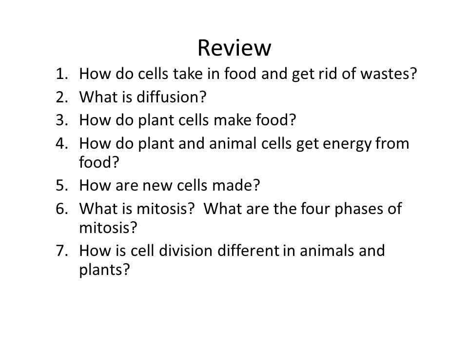 Review How do cells take in food and get rid of wastes
