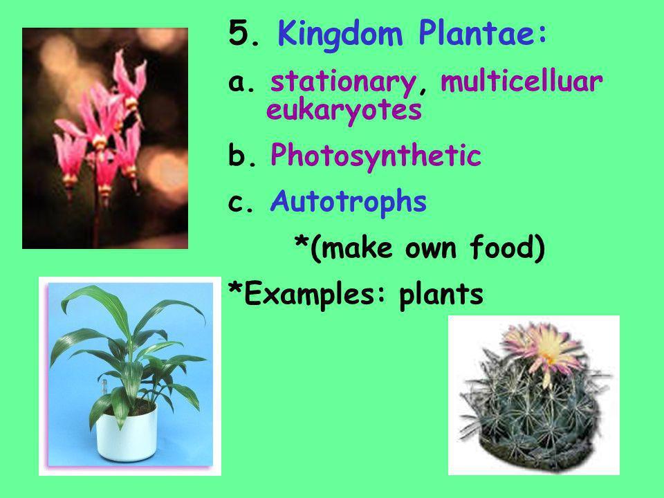 5. Kingdom Plantae: a. stationary, multicelluar eukaryotes