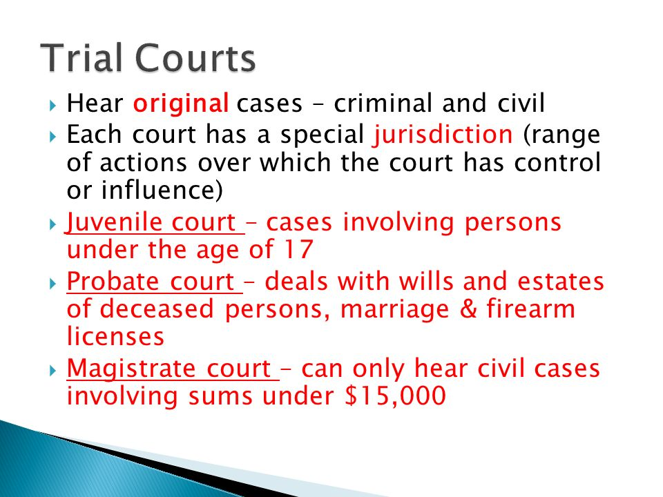 Trial Courts Hear original cases – criminal and civil