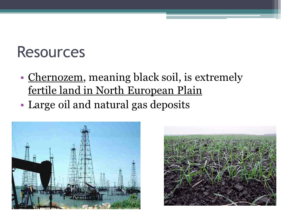 Resources Chernozem, meaning black soil, is extremely fertile land in North European Plain.