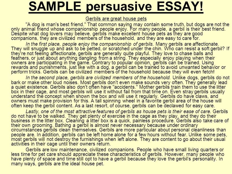 Example Of Persuasive Essay - Madrat.Co