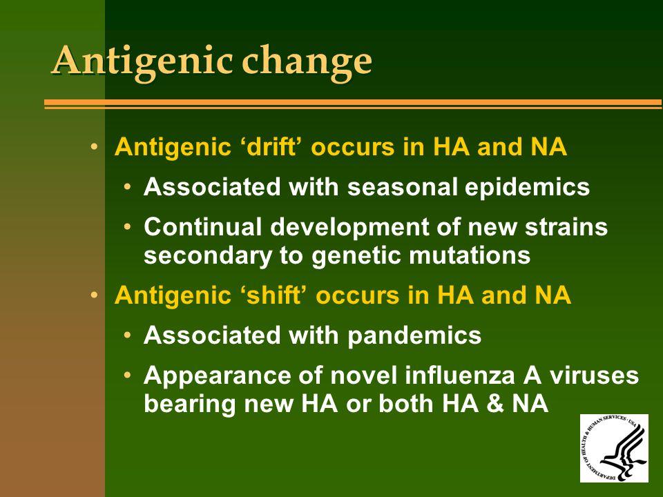 Antigenic change Antigenic 'drift' occurs in HA and NA