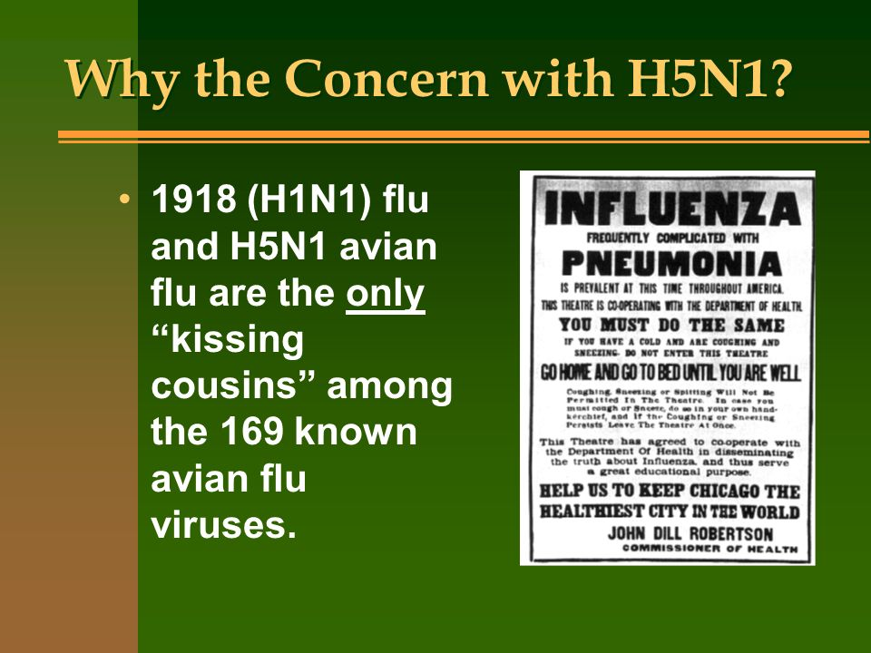 Why the Concern with H5N1.