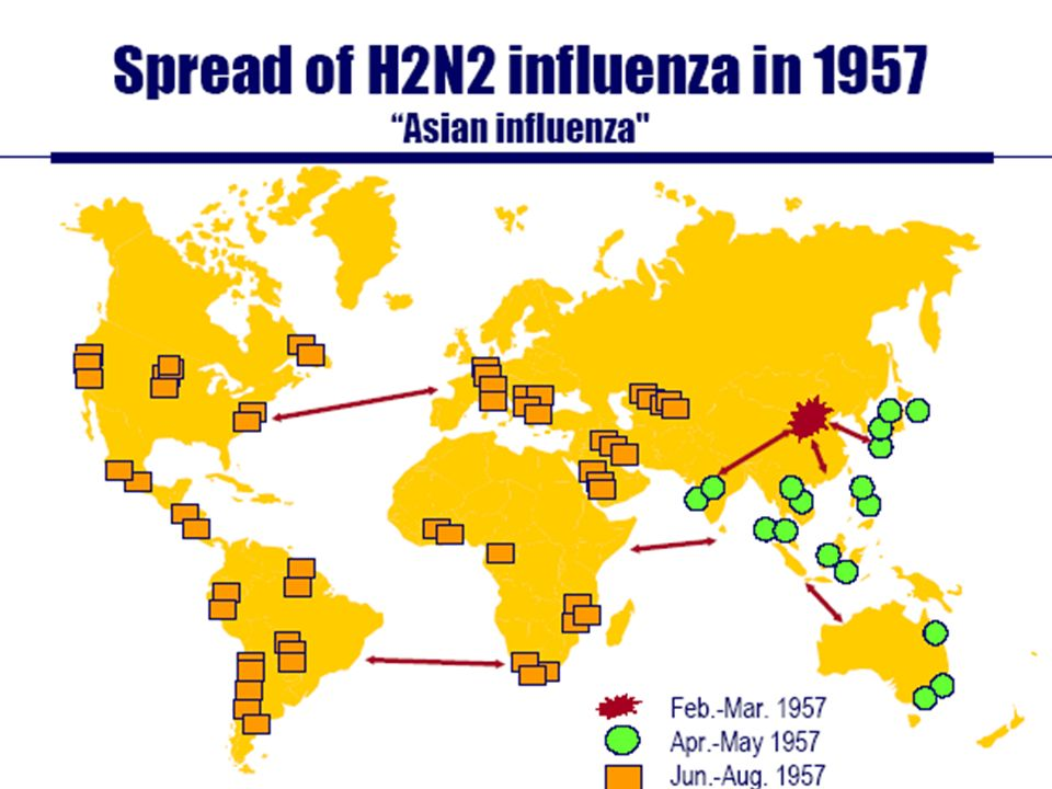 In 1957 it took 4-6 months for the pandemic to spread to the US