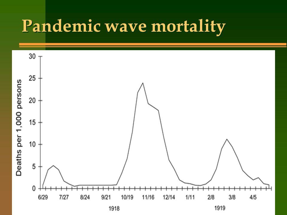 Pandemic wave mortality