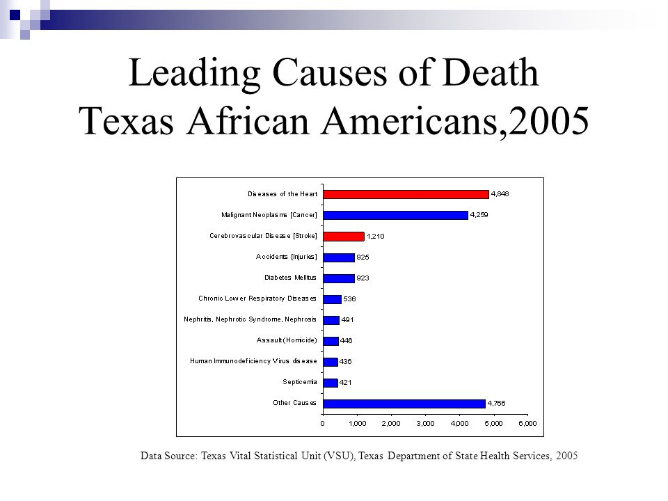 Leading Causes of Death Texas African Americans,2005